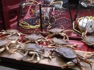 Arbutus RV Fresh BC Crab