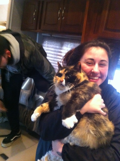 mb-cat-rescue8682