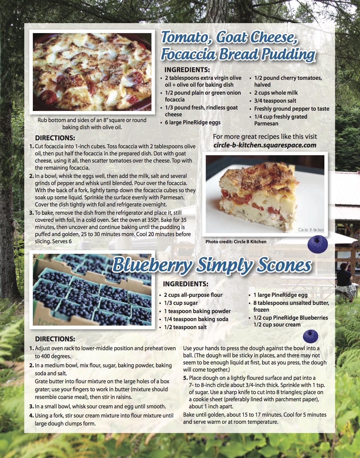 Farm Market Baking Blueberry Scones Amp Focaccia Bread Pudding